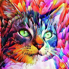 Sam the Colorful Tabby Cat by Peggy Collins