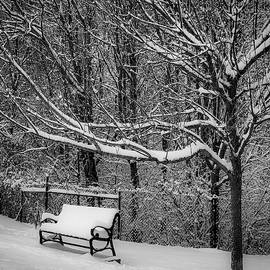 Snow Day by Lora J Wilson