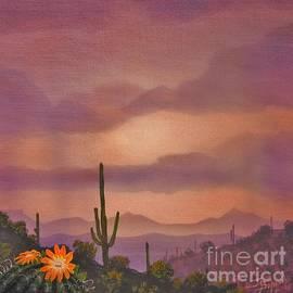 Sonoran Solitude by Jerry Bokowski