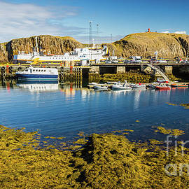 Stykkisholmur harbor, Iceland #2 by Lyl Dil Creations