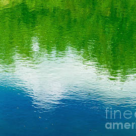 Summer Reflections by Gary Richards