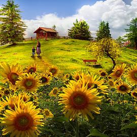 Sunflower Light by Debra and Dave Vanderlaan