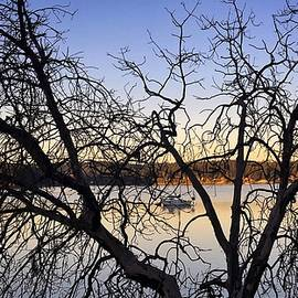 Sunrise Silhouette  by Jerry Abbott
