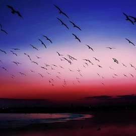 John R Williams - Sunsets Last Light
