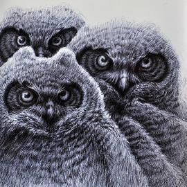 Three Amigos by Rick Hansen