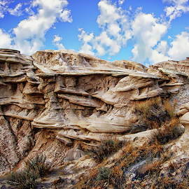 Toadstool Geologic Park by Anthony Dezenzio