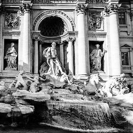 Trevi Fountain in Rome by Alexey Stiop