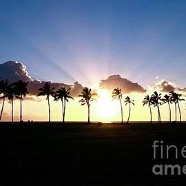 Waianae Sunset by Craig Wood