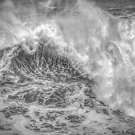 Wave Rise by Bill Posner