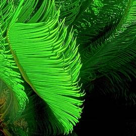 Waves Of Green by James Temple