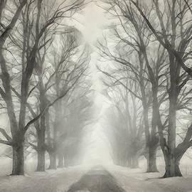 Terry Davis - Winter Trees