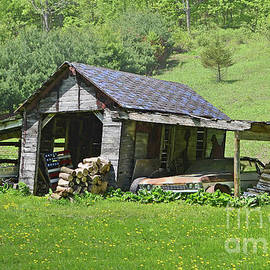 Wisconsin Lean-To by Ron Long