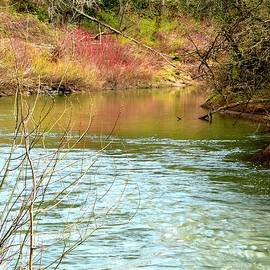 Yamhill River Reflections by Jerry Sodorff
