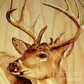 10 Point Buck by Amber Ryder