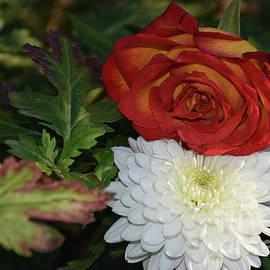 10116-rose With Autumn Flower by Elvira Ladocki