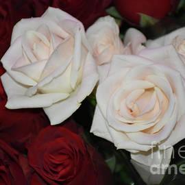 10125-colorful Roses by Elvira Ladocki