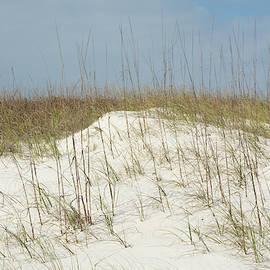 11067 Dunes by Pamela Williams