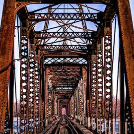 1898 Louisiana Railroad Bridge by Garrick Besterwitch