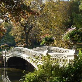 Bow Bridge Central Park by Patricia Caron