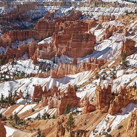 Clear Bryce Canyon in Winter by David Farlow