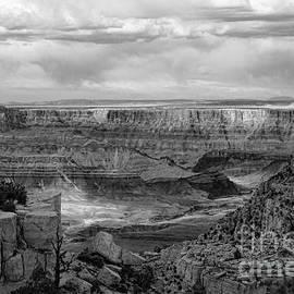Grand Canyon Black  by Chuck Kuhn