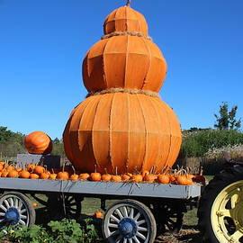 It's Harvest Time by Dora Sofia Caputo Photographic Design and Fine Art
