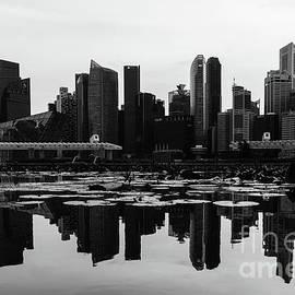 Singapore Skyline by Didier Marti