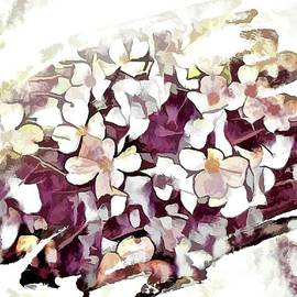 Wild Flowers Of Spring Time by Debra Lynch