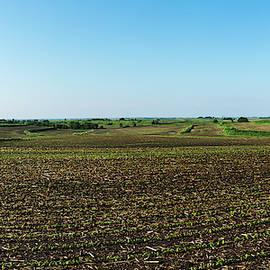 2019 Iowa Springtime by Edward Peterson