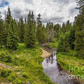 The Harz National Park by Bernd Laeschke