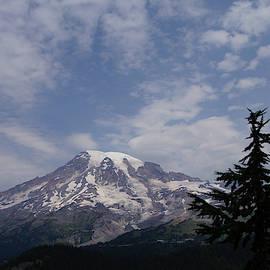 Mt. Rainier, with conifer forest by Steve Estvanik