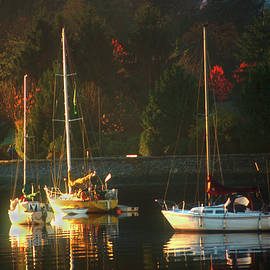 David Smith - 3 sail boats in Coal Harbour Creek Vancouver