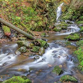 Cascades And Waterfalls by Bernd Laeschke