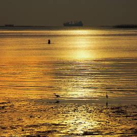 Golden Sunset by Oleg Ver