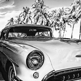 50's Oldsmobile Among The Palms by CJ Anderson