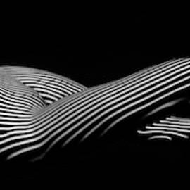 5298 Zebra Woman H by Chris Maher