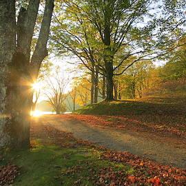 A Bass Lake Sunrise in Autumn by Patricia Joynes