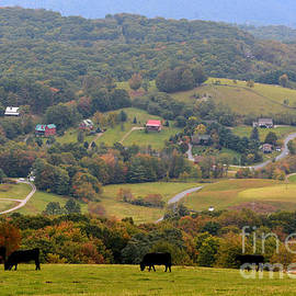 A beautiful morning over the valley by Dianne Sherrill