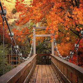 Saija Lehtonen - A Colorful Autumn