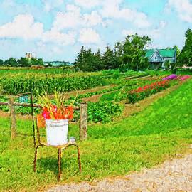 A Country Garden by Lenore Locken