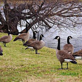 Gaby Ethington - A Gaggle of Geese