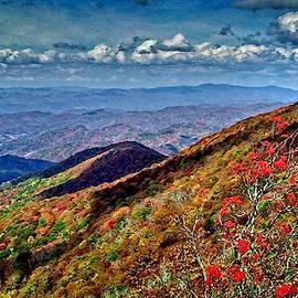 A Great View by Allen Nice-Webb