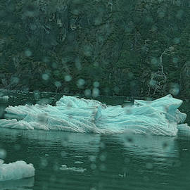 A Large Chunk of Glacier by Paulette B Wright