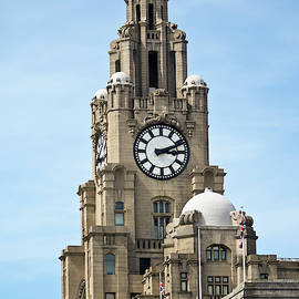 A Liver Bird on a Spire of the Royal Liver Building, Liverpool,  by Derrick Neill