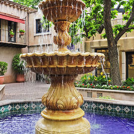A Lovely Fountain in a Mexican Courtyard by Derrick Neill