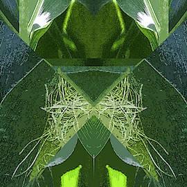 A-Maize 2, Flying Corn - by Julie Weber