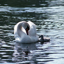 Micky White - A Mother