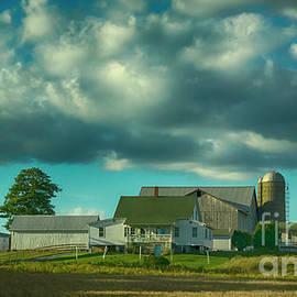 A New Wilmington Pennsylvania Amish Farm by Janice Pariza