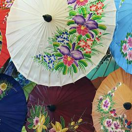 A Paper Umbrella Display, Chiang Mai, Thailand by Derrick Neill