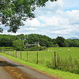 A Pastoral Welsh Landscape, Llanedwen, Anglesey, Wales, GB, UK by Derrick Neill
